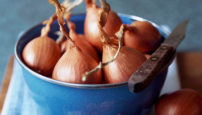 Benefits of Shallots for Health